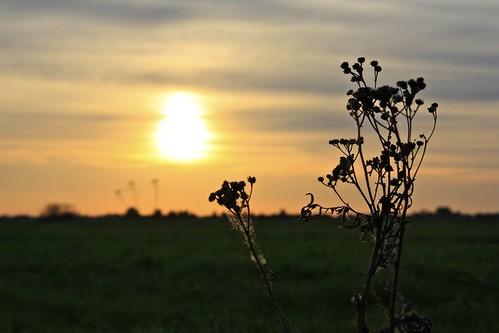 sunset sky sun poland kroczewo