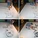 Sketch in Progress - Pencil Vs Camera - 73 by Ben Heine