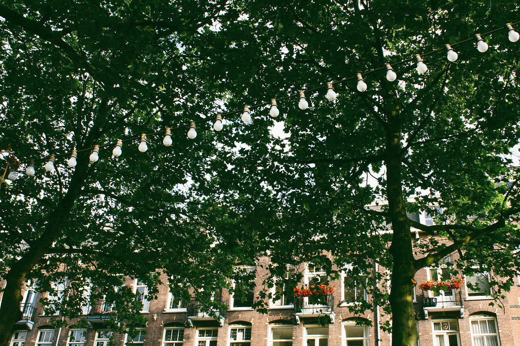 I like you, Amsterdam