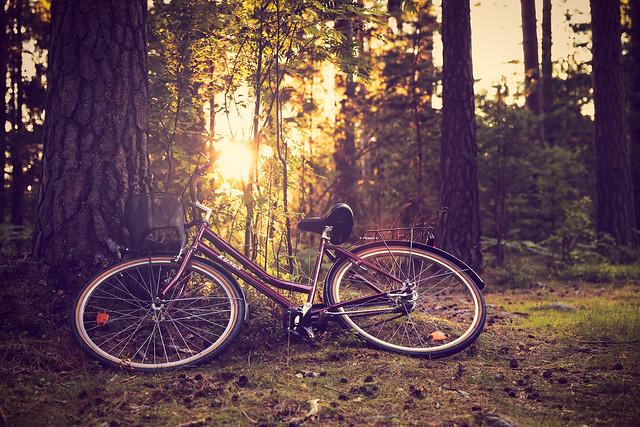 Resting bike