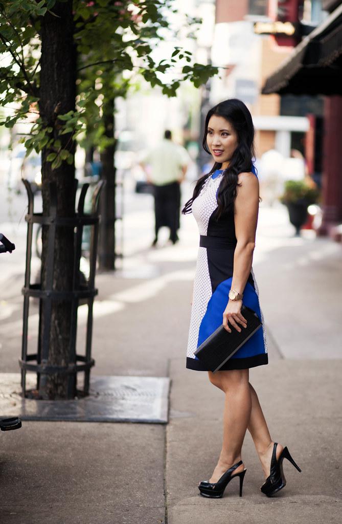 cobalt blue white honeycomb print dress | wedding guest outfit | petite fashion