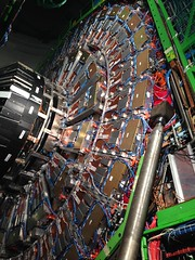 CERN CMS