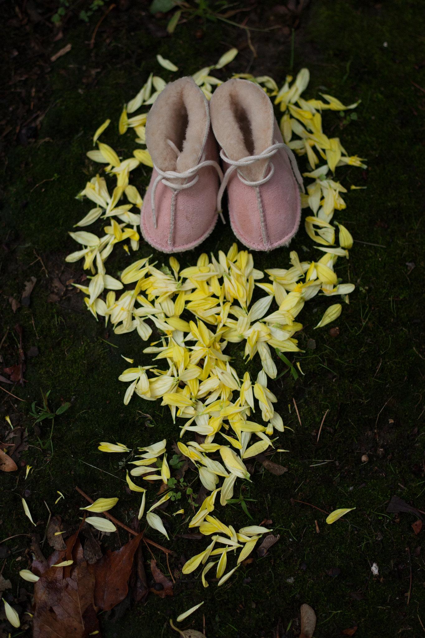 A path of petals.