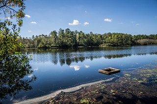 South Edisto River-016