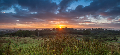 autumn sunrise 2013 magheralavebushes