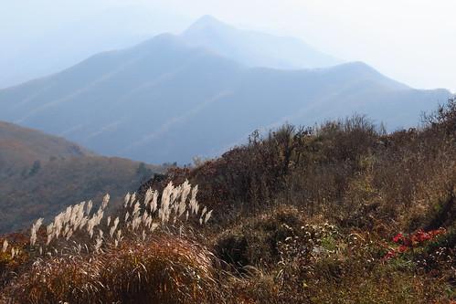 autumn mountain fall canon landscape jiri s110 jirisan nogodan