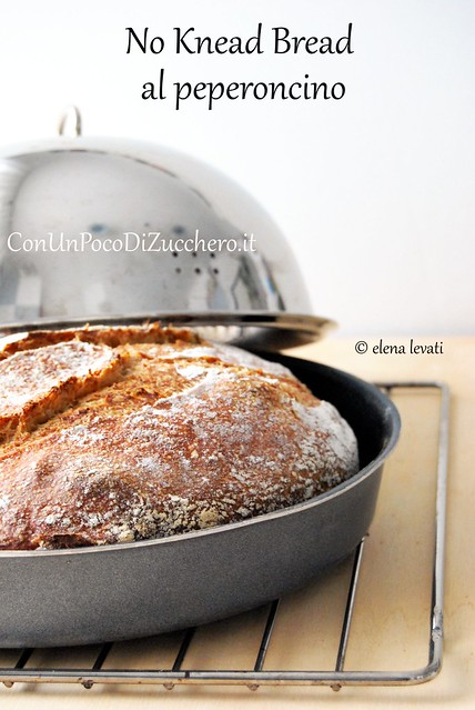 Pane senza impasto - No Knead bread -