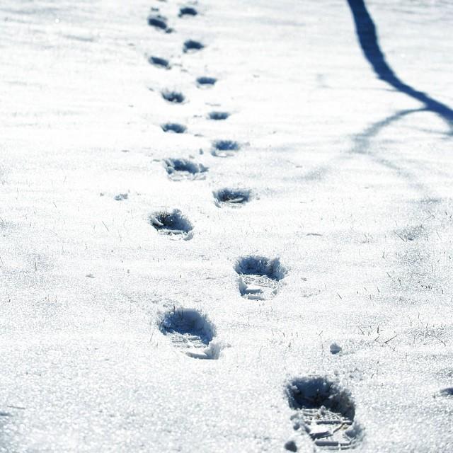 雪后晴天 #mychinagram #mcgpro #captchina #worldingram #wu_asia #footprint