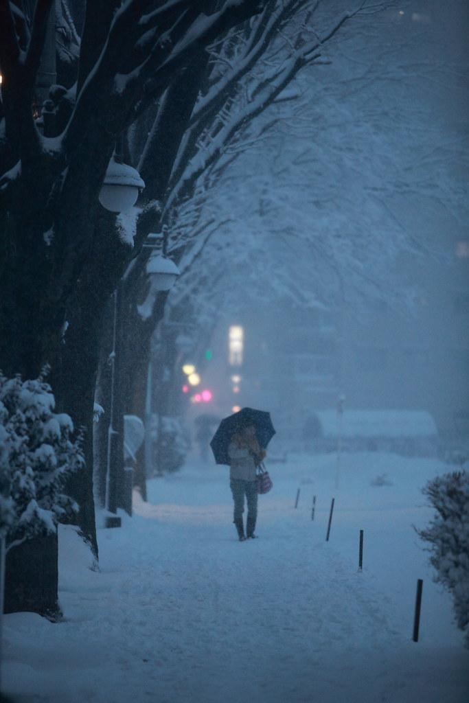 A Blizzard Hits Tokyo