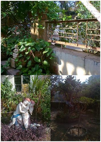 Maa Garden by lavannya