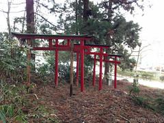 蠣崎神社鳥居