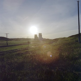 Grain elevators at sunset in Gwynne, Alberta