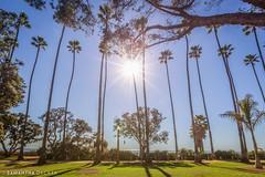 Sunny Santa Monica