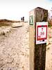 La dune Marchand