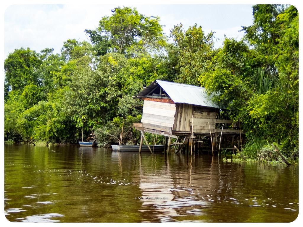 Borneo-20170407-P4070007