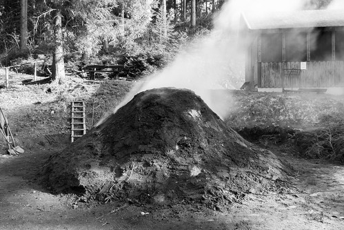 Charcoal Pile