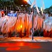Toomer's Corner by Scott Thompson - inaap.com