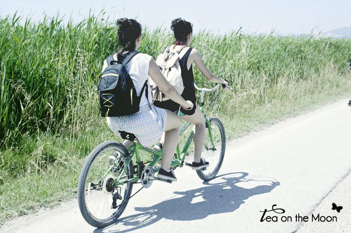 Inspira Alvaro Sanz 2013-bicicletas 02