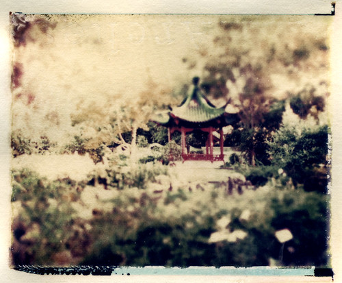 scholar's pavilion (Polaroid transfer) by Hilary (curioush)
