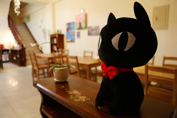 IMG_7927小貓