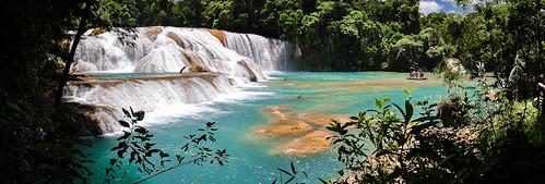 Cascadas de Agua Azul (57)