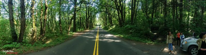 2013-07-30 Portland-2379