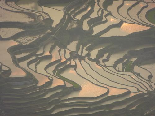 Yunnan13-Yuanyang 24-Bada (64)