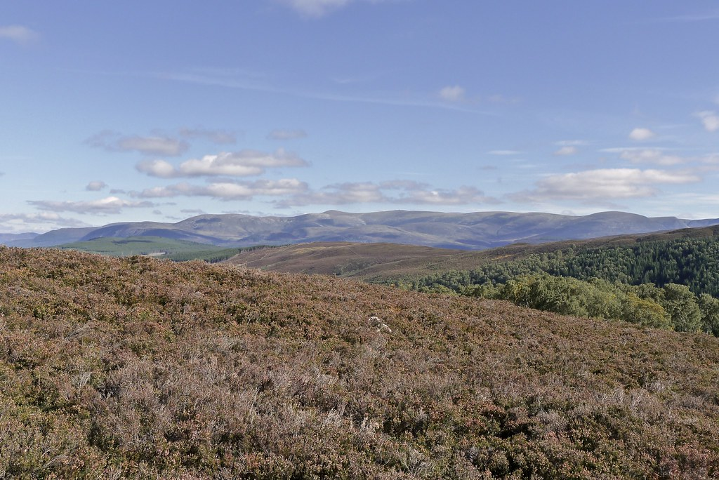Western Cairngorms