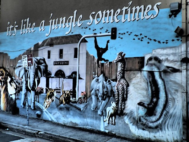 Life is like a jungle sometimes - Street art in Newtown, Sydney