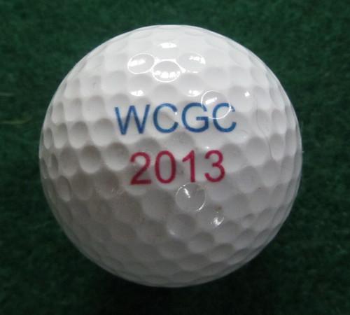 WCGC 2013