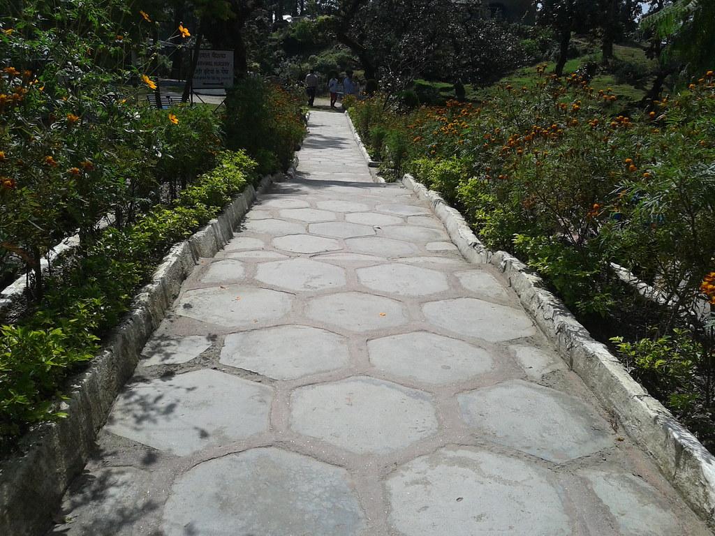 walkway near Bhulla Tal, Lansdowne
