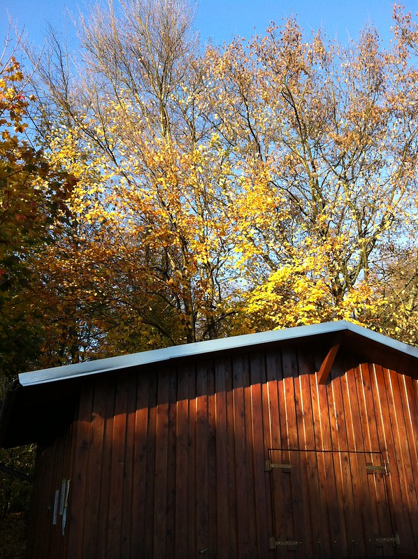 Autumn in the Taunus_sun on the refreshment shack