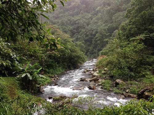 秋日細雨下的九寮溪。(攝影:廖靜蕙)