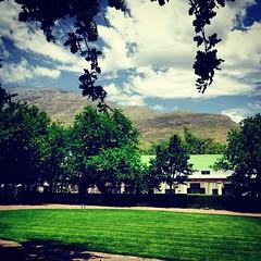 Stellenbosch, South Africa #southafrica #africadosul #stellenbosch #lanzerac