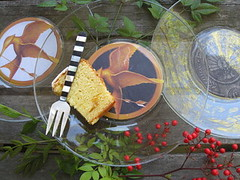 DIY Hunger Games party plates