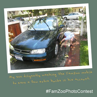FamZoo Good Money Habits Photo Contest