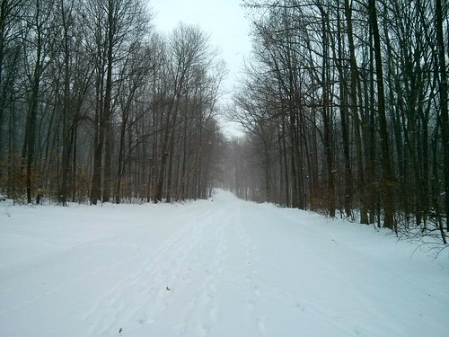 winter snow de newark ironhillpark