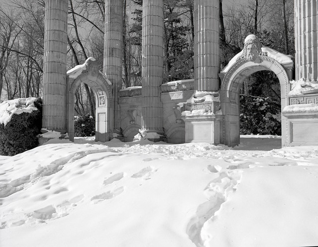 Guildwood in Winter011.jpg
