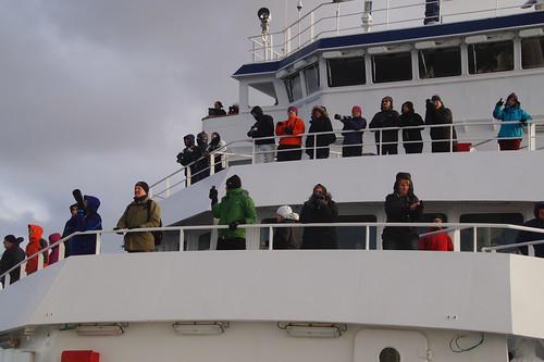 068 Iedereen aan dek voor walvissen
