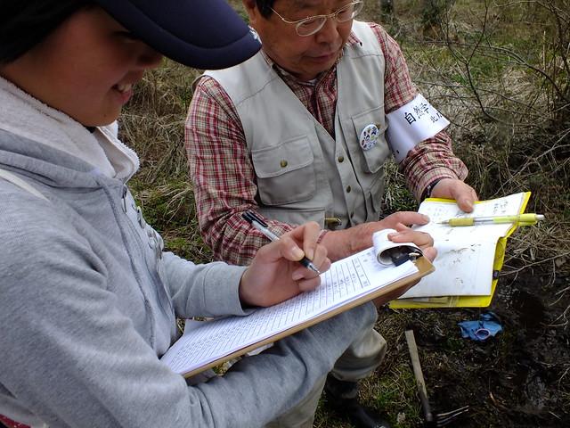地図を確認しながら,場所と胚の数,成長具合を記入する.