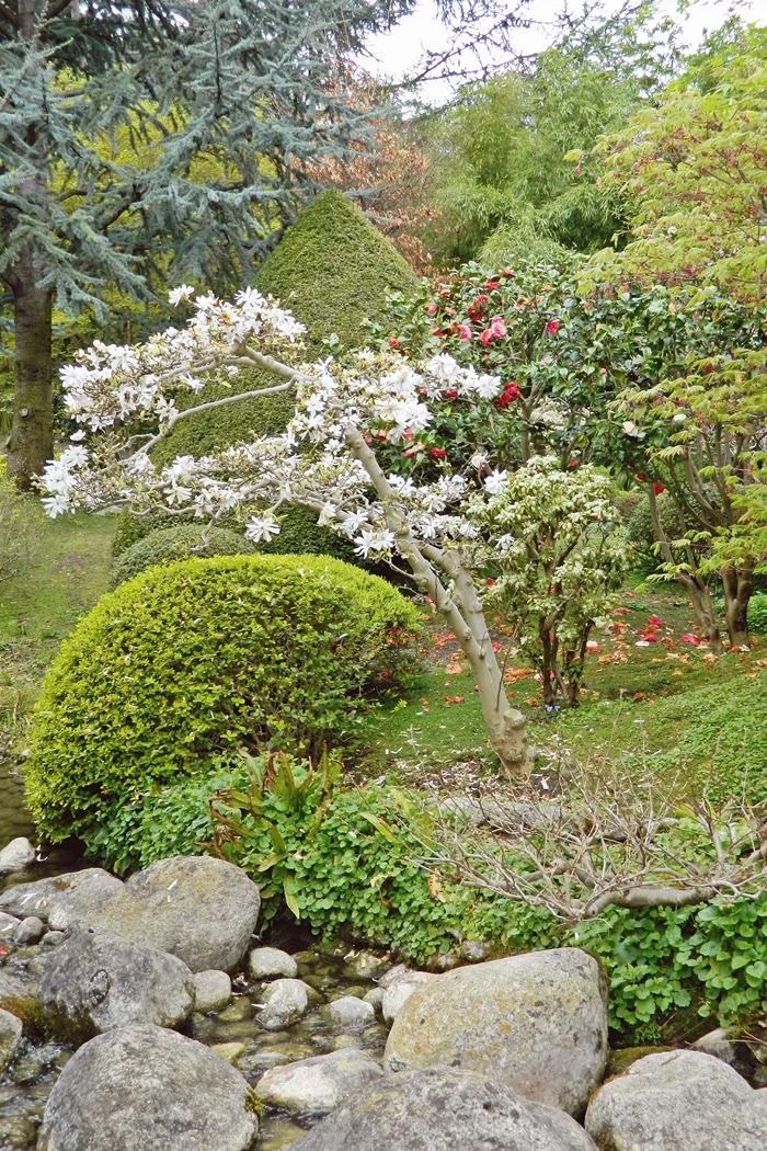 Jardin japonais Albert Kahn (10)