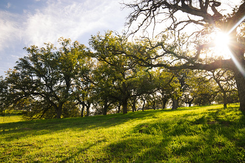 ramona california unitedstates us