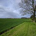 Moor Farm,Great Ouseburn