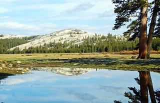 Tuolumne Meadows Reflection, Yosemite 2015