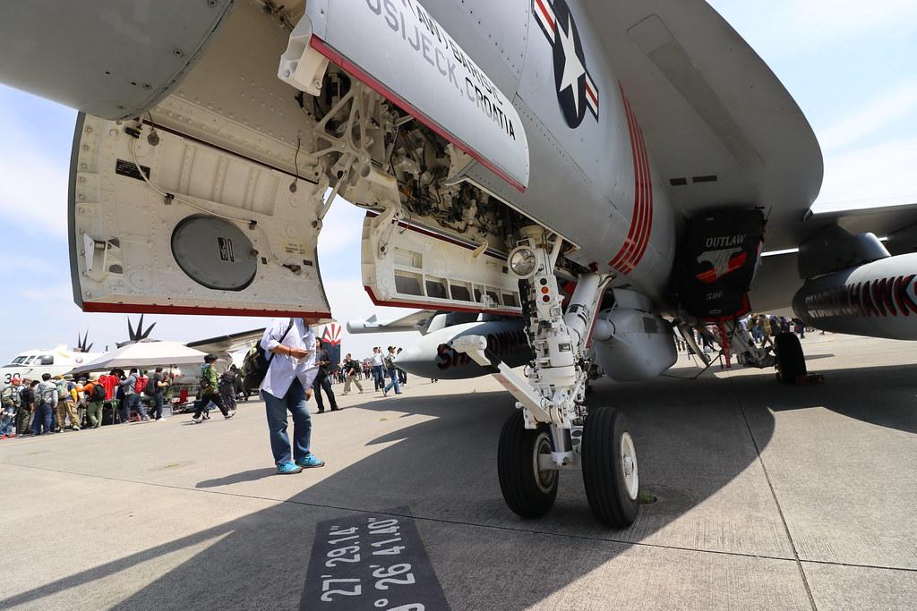 EA-18G Landing Gear