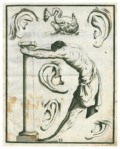 005-Letra D-Alfabeto in sogno-1720-Staatsbibliothek zu Berlin