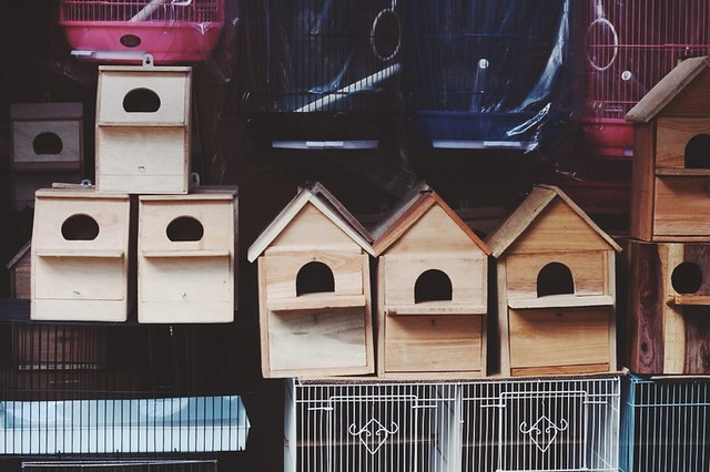 The Birdhouses