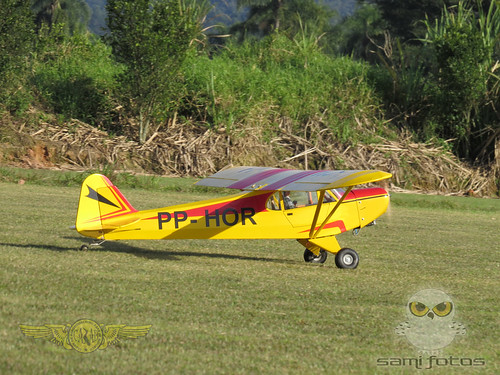 Repaginação de um Piper J-3 para um Neiva P56 C Paulistinha  9544050293_a7603561f2