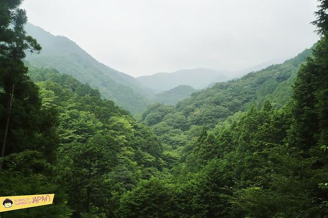 Hiking Mt. Nabewari - day trip from Tokyo - views