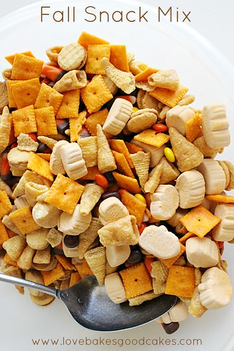 Fall Snack Mix 4